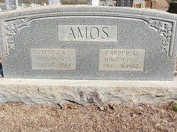 Mary Alpha <i>Chumley</i> Amos