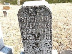 R. E. Amos