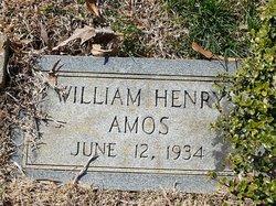 William Henry Amos