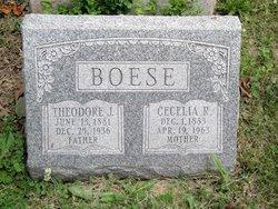 Cecelia Rose <i>Hutt</i> Boese