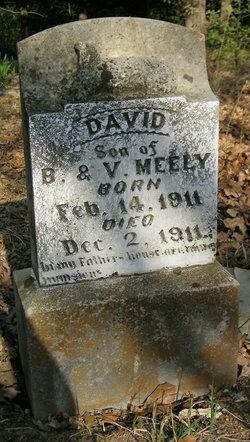 David Meely