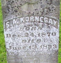 Sidney A Kornegay