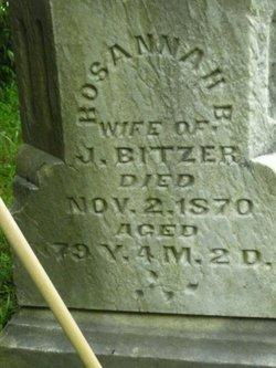Rosannah Barbara <i>Metzger</i> Bitzer
