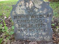 Jennie <i>Wildcat</i> Dandridge