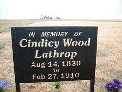 Cindicy <i>Wood</i> Lathrop