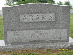 Colene Adams