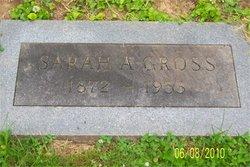 Sarah Ann <i>Alexander</i> Gross