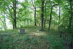 Montraville Bevins Cemetery