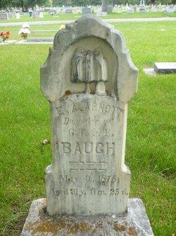 Emeline Austin <i>Baugh</i> Arnott