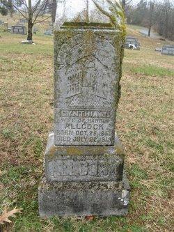 Cynthia Jane <i>Edwards</i> Allcock