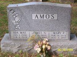Ida Mae Amos