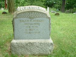 Caleb P Hobson