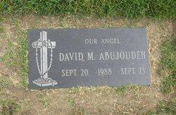David Maher Abujoudeh