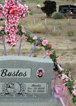 Amelia Bustos