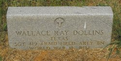 Wallace Ray Dollins