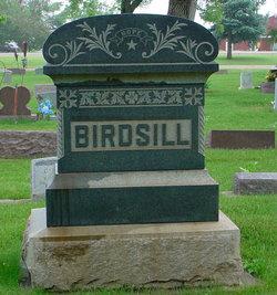 Olive A. Birdsill