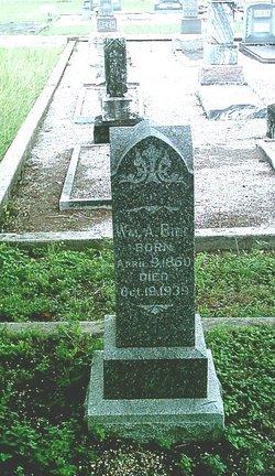 William A. Biel