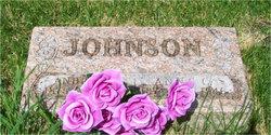Andrew T Johnson