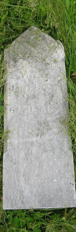 Mary Ann <i>Jennings</i> Allen