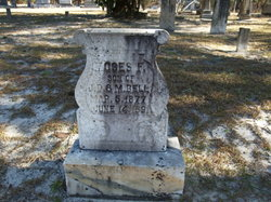 Moses F. Bell