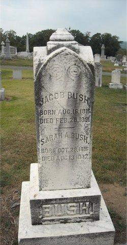 Jacob Bush