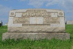 Tony Cardamone