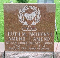 Dr Anthony E. Amend