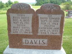 David Edward Davis
