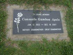 Consuelo <i>Gamboa</i> Ayala