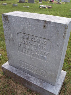 Albert M Corns