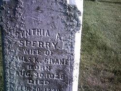 Cynthia Ann <i>Sperry</i> Crane
