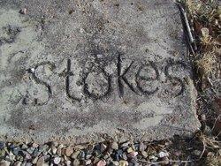 Thomas B Stokes