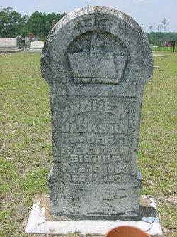 Andrew Jackson Bishop