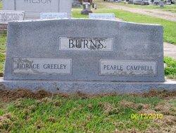 Horace Greeley Burns