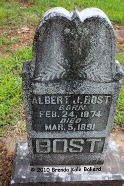 Albert Jackson Bost