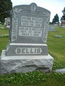 Adam Bellis