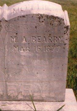 Mary Ann <i>Lee</i> Bearry
