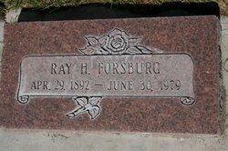 Ray H Forsburg