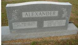 John Fields Alexander