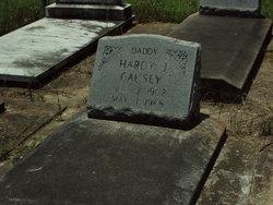 Hardy J Causey