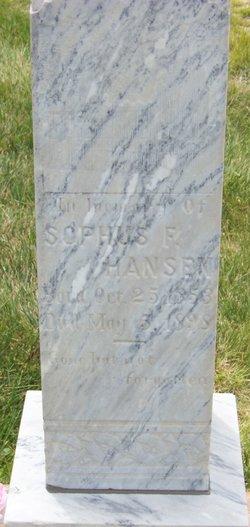Sophus Frederick Hansen, Sr