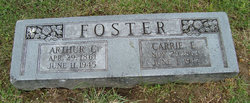 Carrie E Foster