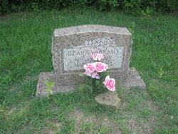 Clara Abrams