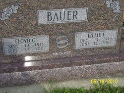 Lillie F <i>Schultz</i> Bauer