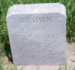 Unknown Brown