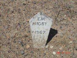 Elizabeth M Higby