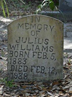 Julius Williams