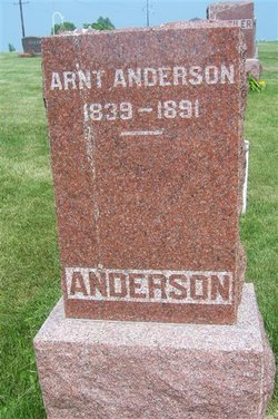 Arnt Anderson