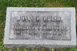 Joan G Little Toot <i>Geisel</i> Emilut