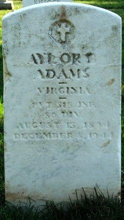 Aylor E Adams